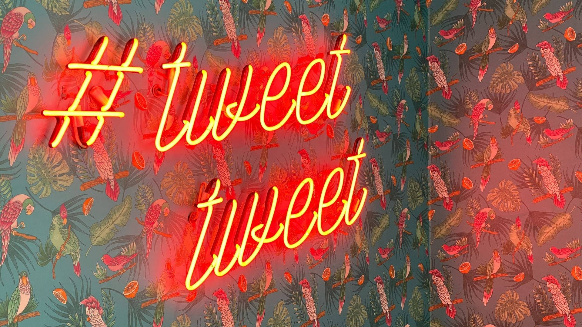 Twitter influencer wall